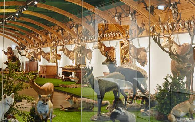 Arche Noah Sammlung Kunst & Natur